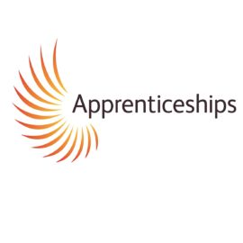 Apprentice of the Month – February